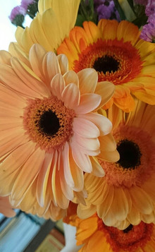 今週のお花と花言葉と食事のイメージング