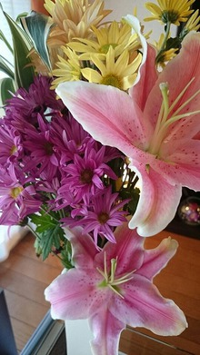 今週のお花と花言葉とSORAの幸せの輪