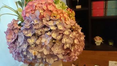 今週のお花と花言葉