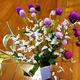 今週のお花と花言葉と空き状況